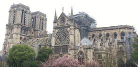 Notre Dame in de steigers